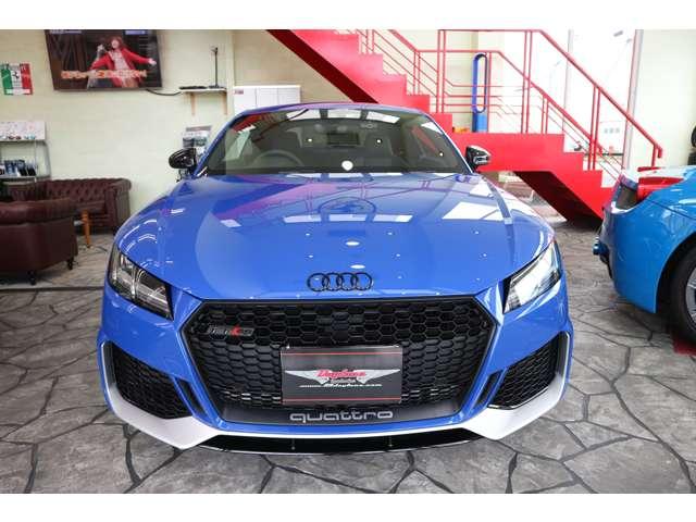 専用ボディカラーとして初代Audi RS 2 Avantのオマージュしたボディカラー、ノガロブルー・パールエフェクトを採用。(スペシャルボディカラー)