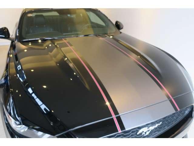 フォード マスタング 50イヤーズ エディション 中古車在庫画像8