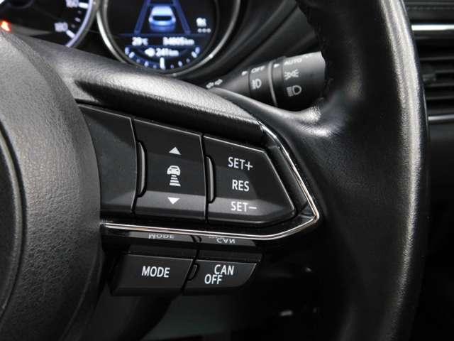 高速道路ストレスフリーの追従型クルーズコントロール装着です。